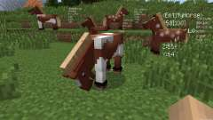 Scouter [1.7.2] pour Minecraft