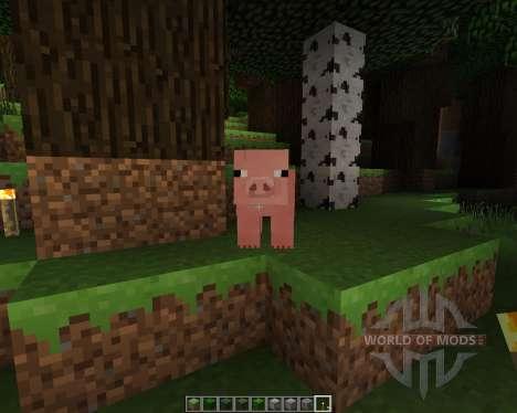 RealistiCraft [128x][1.7.2] für Minecraft