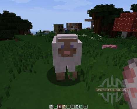 Pamplemousse [16x][1.8.1] für Minecraft