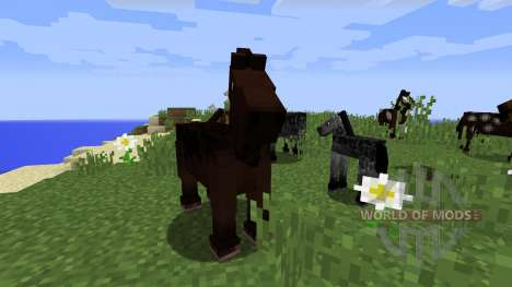 Télécharger Minecraft 1.6.1
