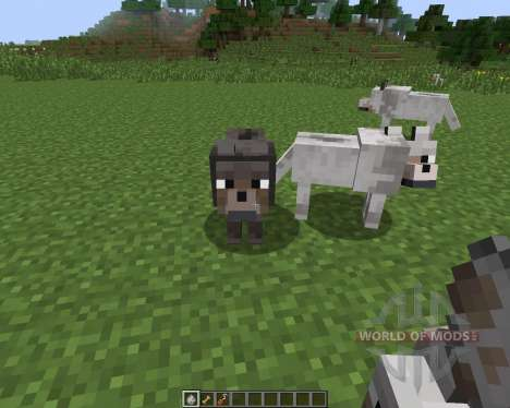 Sophisticated Wolves [1.7.2] pour Minecraft