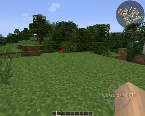 RadarBro [1.7.2] pour Minecraft
