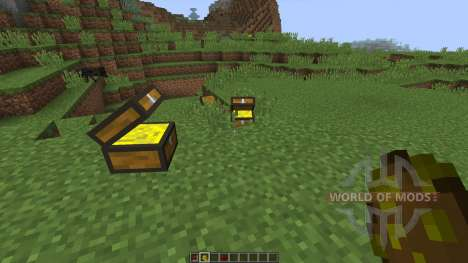 Treasure Chest [1.8] für Minecraft