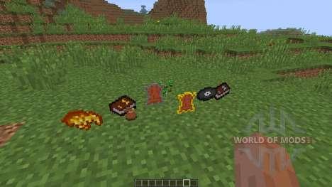 Definitely NOT Seeds [1.8] für Minecraft