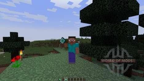 Roxas Experience Gem [1.8] für Minecraft