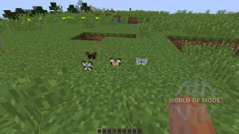 Butterfly Mania [1.8] pour Minecraft