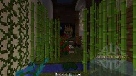 Minisize Modern house [1.8][1.8.8] für Minecraft