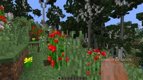 Birch Isle Tree Pack Featurette für Minecraft