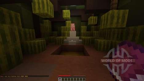 Melon mania 2 für Minecraft