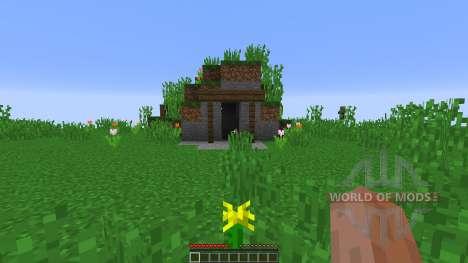 Sidequest Island für Minecraft