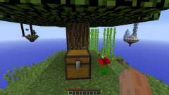 Alone in the Sky pour Minecraft