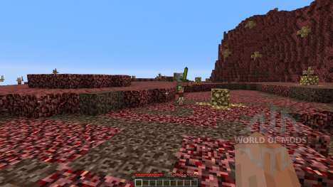 The new nether pour Minecraft