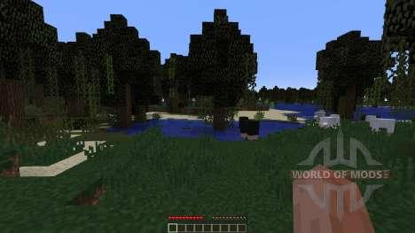 Custom Biome Project für Minecraft