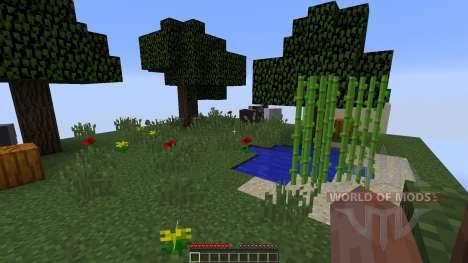 Chunks für Minecraft