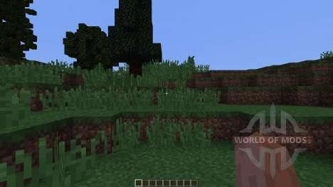 Pine island für Minecraft