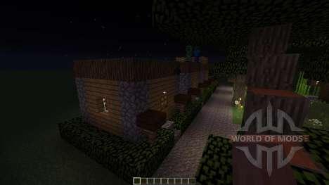 TheTown für Minecraft