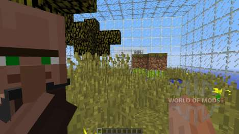 Live In Cubes pour Minecraft