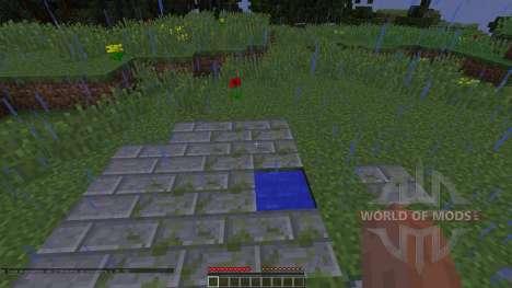 Project 11 für Minecraft