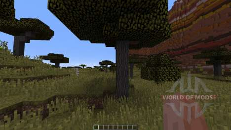 Mesa Savannah Canyons pour Minecraft