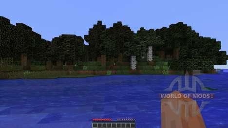 Vision pour Minecraft