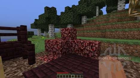 NetherLast pour Minecraft