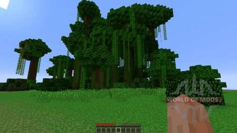 Cylinder Survival pour Minecraft