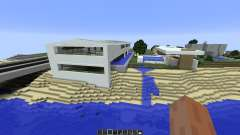 Eli Minimalist house