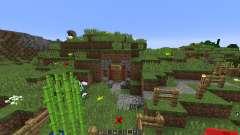 Hobbiton Settlement