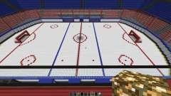 Oustanding Outdoor Hockey Arena