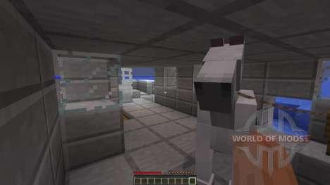 ARCTIC für Minecraft