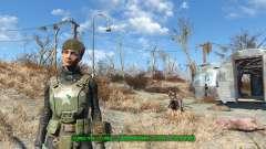 Hack, um das Aussehen zu ändern für Fallout 4