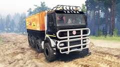 Tatra Phoenix T 158 8x8 für Spin Tires