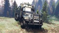 KrAZ-255 B1 Tattoo für Spin Tires