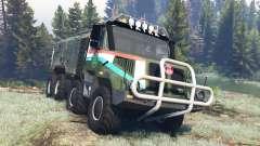 Tatra 163 Jamal 8x8 v4.0 pour Spin Tires