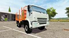 KAMAZ-43118-24 camion