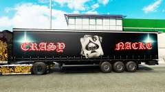 Haut Crasy Trans Logistic v2.0 für Anhänger für Euro Truck Simulator 2