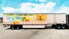 La peau de Dole, sur un rideau semi-remorque pour American Truck Simulator