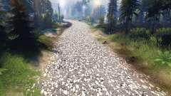 Textur der grauen asphalt mit weißen Kies für Spin Tires