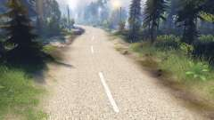 Die blasse textur der zweispurigen asphalt für Spin Tires