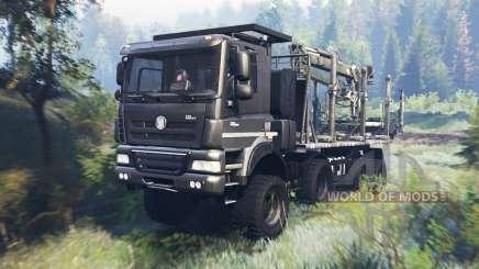 Tatra Phoenix T 158 8x8 v8.0 für Spin Tires