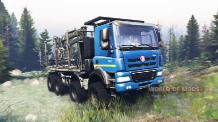 Tatra Phoenix T 158 8x8 v9.0 für Spin Tires