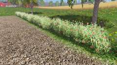 Placeable shrubs pour Farming Simulator 2015