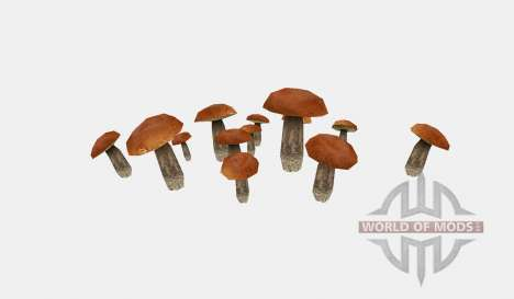 Shrooms v2 für Farming Simulator 2015