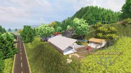 WTS für Farming Simulator 2013