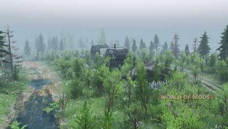 La forêt 9 pour Spin Tires