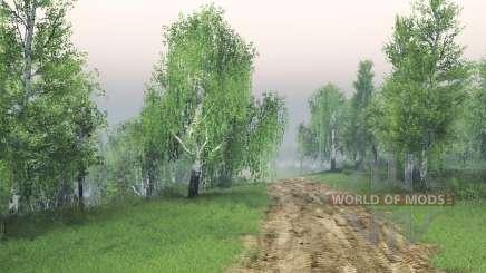 Birch grove pour Spin Tires