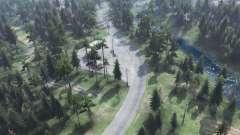 Forêt de transit