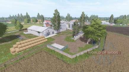 Badkowo v1.1 für Farming Simulator 2017