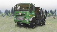Tatra Phoenix T158-8P5 6x6 2011 v1.2 pour Spin Tires