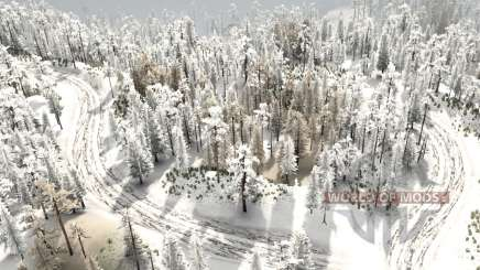 Snow Test 6 pour MudRunner